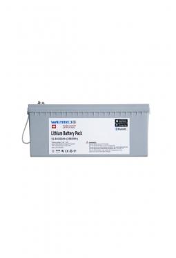 WEMO Lithium LiFePO4 BMS 12,8V 200Ah